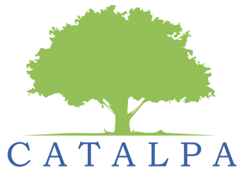 Catalpa Investment